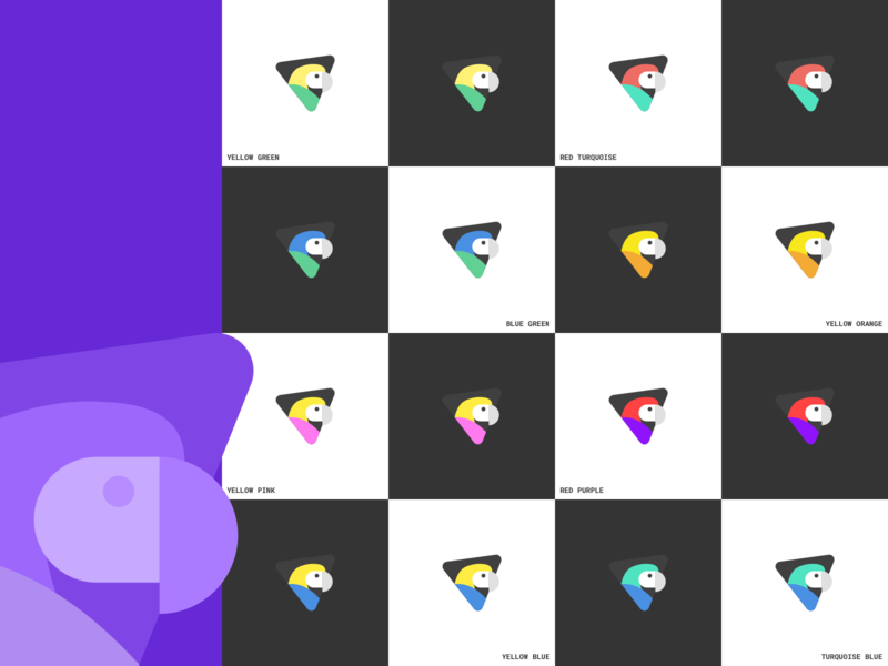 Branding Colors Exploration colors icon logo branding