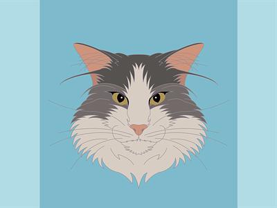Finch meow cat cats digital art illustrator lineart digital line illustration