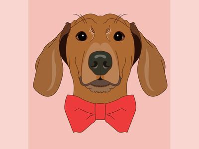 Morty illustrator digital illustration lineart weiner dog dog design illustration