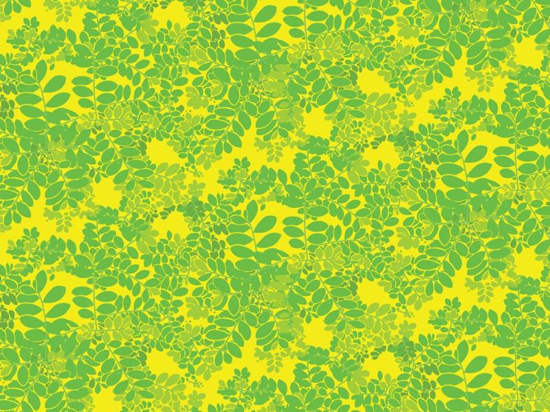 Moringa illustration in yellow