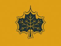 The Mighty Maple Leaf procreate illustration maple leaf leaf maple
