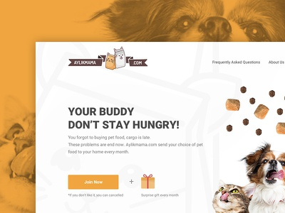 Aylikmama Website drawing character vector design pet website web mobile ux ui