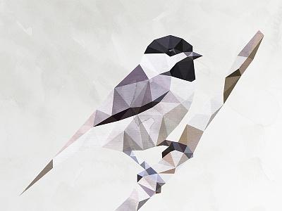 Chickadee bird vector dmesh texture chirp