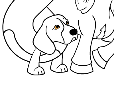 A better dog's head