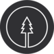 Pine Design Studio