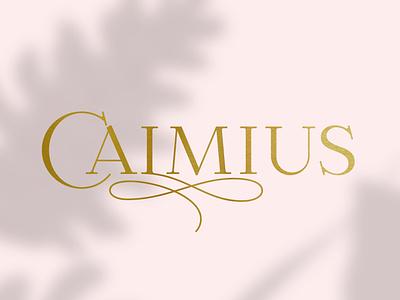 Calmius typeface fashion serif lettering typeface font