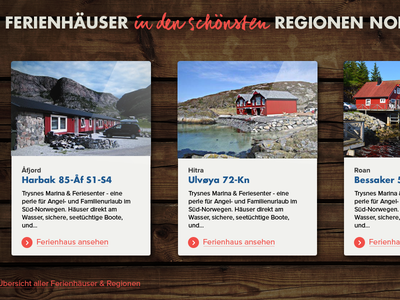 Norge Fjord website wood texture cards moodboard