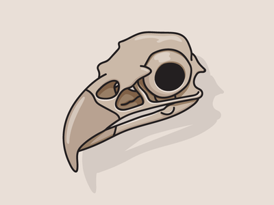 Eagle Skull skull eagle