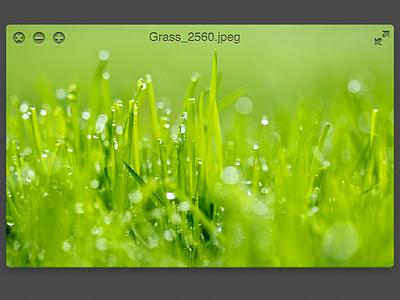 New LilyView titlebar, proof of concept app ui minimal lilyview mac