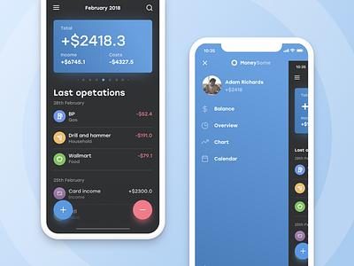 Moneysome #1 dashboard overview income costs finance money cash ios blue color app design minimal application design app ui ux