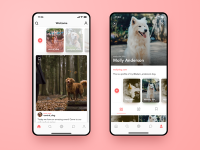 Instagram for Pets | iOS Concept account profile stories feed instagram animal pink cats dogs pets ui ux interface web design design web app ios gradient mobile