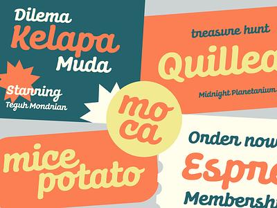 Dunley logo design script lettering fonts graphicdesign letter font typeface typography type