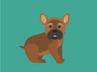 Pets no.1 - Clyde