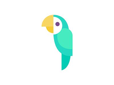 Bird parrot parakeet bird