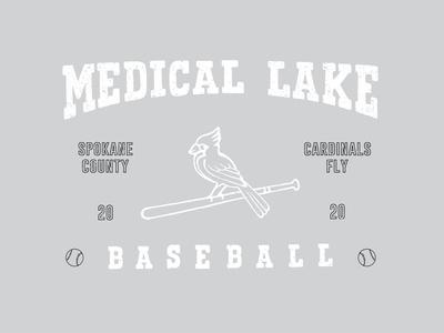 Medical Lake Bsbl