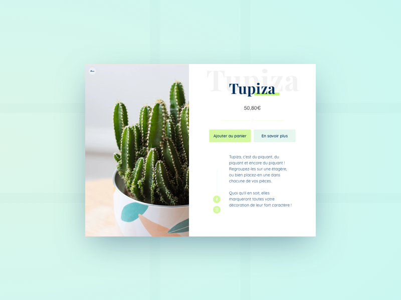 Cactus - Product sheet interface design green ecommerce ui cactus