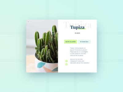 Cactus - Product sheet interface design green ecommerce ui cactus