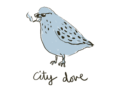 Just a cool ass pigeon