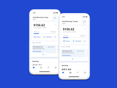 Pay Card mobile app autopay balance statement visual ux card credit finance payment
