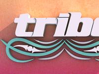 Tribe 50º