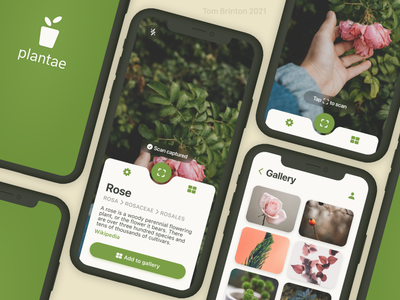 Plantae - Plant Identification App design iphone ux ui