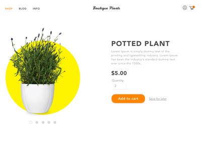 Online boutique plants