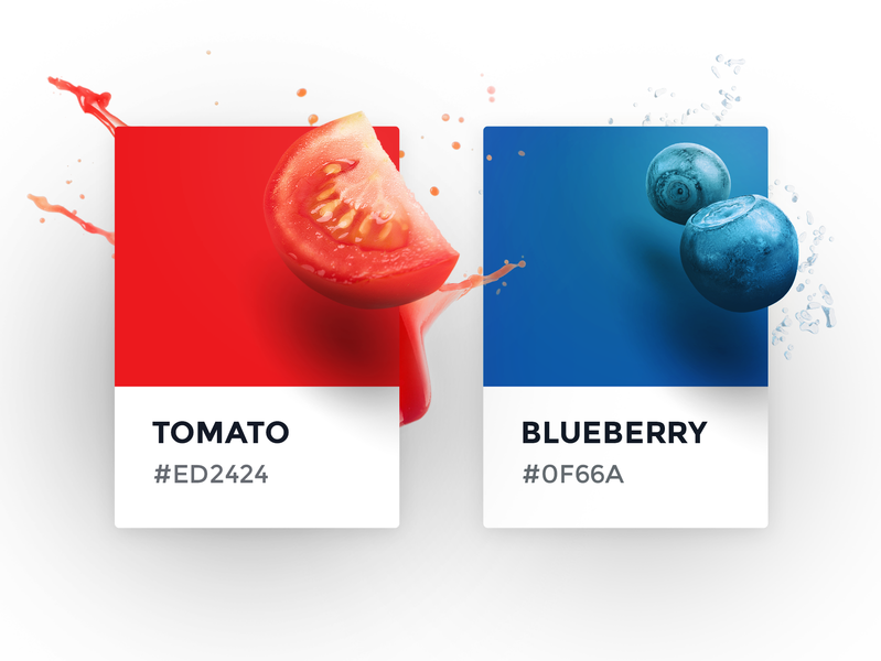 Color cards concept vegetable fruit design graphic interface guide red blue blueberry tomato style ui card pantone color
