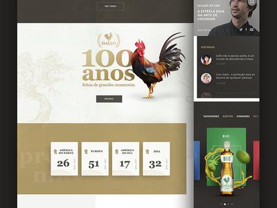 """Gallo - Olive oil"" site proposal digital art oliveoil gallo filipesj webdesign digital ui interface ux graphic"