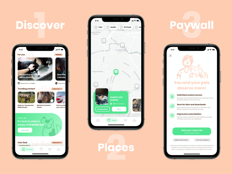 Paws - Designflows 2020 pets stories map cards uidesign paywall designflows2020 bendingspoons ui design designflows