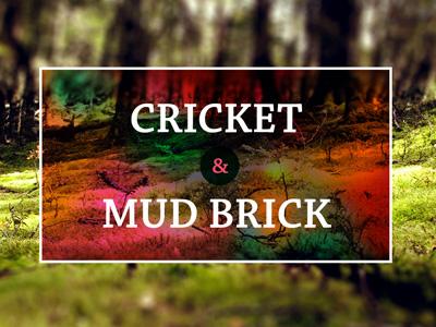 Cricket and mud brick title