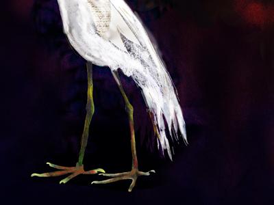Em hungry egret