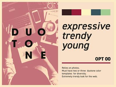 Duotone stylescape style brand identity moodboard options exploration branding duotone stylescape