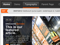 WP Magazine Theme Detail