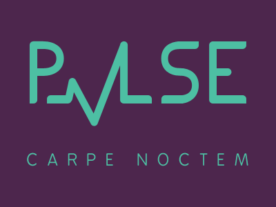 PVLSE Logo & Tagline logo branding typography