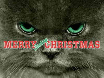 Merry Christmas christmas cat