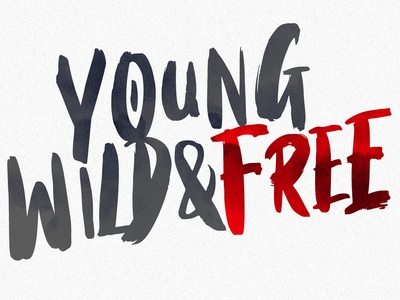 Young, Wild & Free heavy bold urban street paintbrush hand made