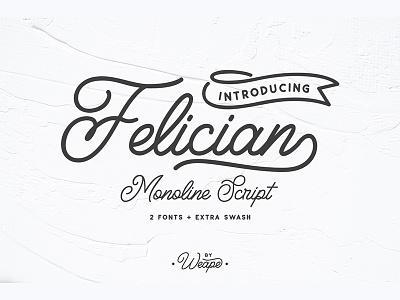 Felician Monoline Script monoline logo maker typewritter logo font logotype script font type typography lettering hand lettering
