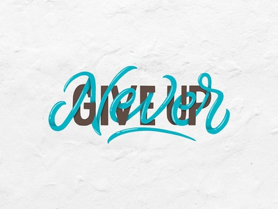 Never Give Up! quotes illustration fonts type design logo typography calligraphy logotype hand lettering lettering