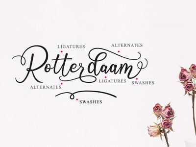 Features on Octhovia Script modern calligraphy font bundle font typeface wedding font fontduo font scrip fonts illustration branding logo calligraphy typography hand lettering lettering