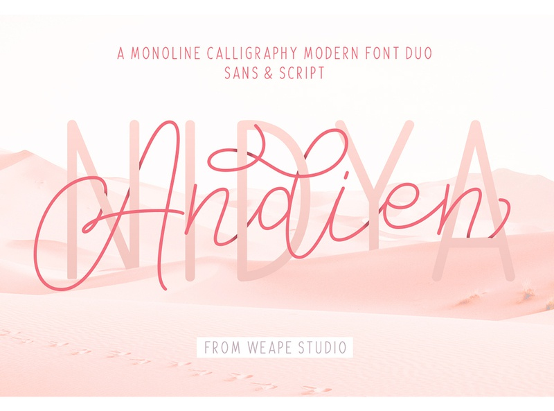 Andien Nidya Font Duo logotype illustration poster typedesign font logo calligraphy hand lettering typography lettering