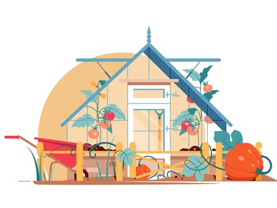 Garden with tomatoes and pumpkins kit8 vector illustration pumpkins tomatoes flat building