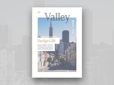 Valley Magazine Issue 05 #uidaily stanford san francisco cover magazine uidaily