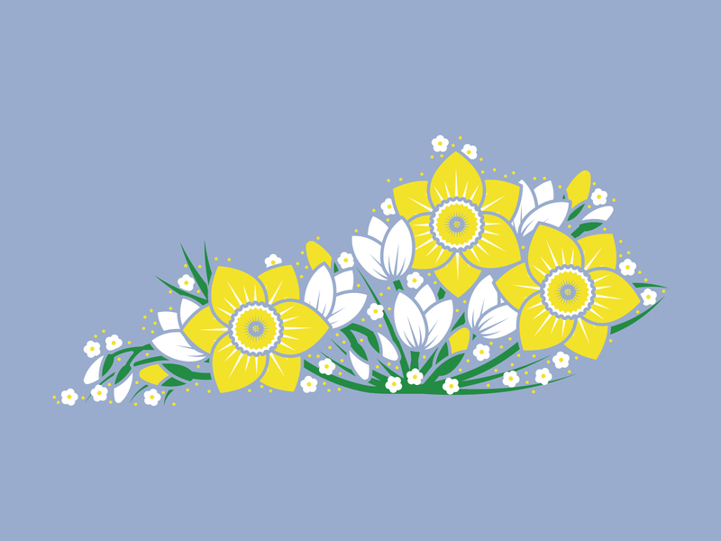 Spring Floral Kentucky tee daffodil spring flowers vector kentucky illustration