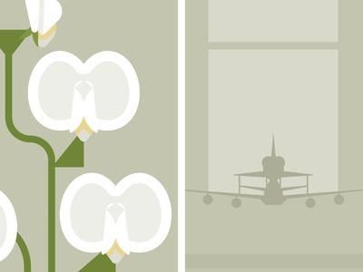 Flowers & Shuttles: Sweet Pea