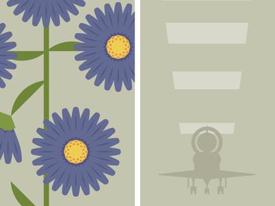 Flowers & Shuttles: Aster