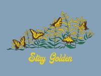 Stay Golden Kentucky