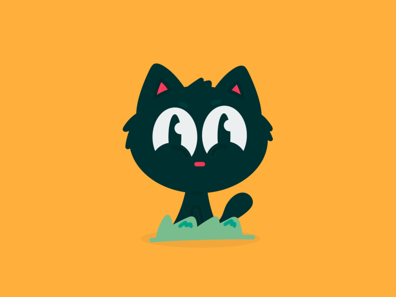 Selfie of the Kitten / Leopoldo animation brazil 2d new design cartoon character dribbble illustration vector adobe kitten cat kitten selfie cat