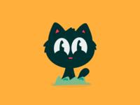 Selfie of the Kitten / Leopoldo