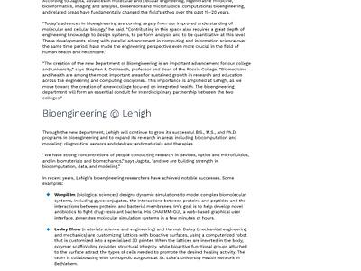 Lehigh Engineering Website gradient design  front-end  back-end vector ux ui typography scheme color graphic design web