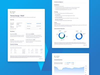 Vise: Monthly financial statements uiux charts graphs finance visual design fintech